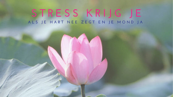 Stress en burn-out preventie